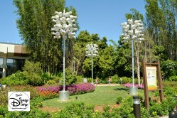 The 2017 Epcot International Flower and Garden Festival - The Purple Martins near Test Track