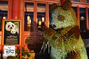 The 2017 Epcot International Flower and Garden Festival - Lighting enhances the display