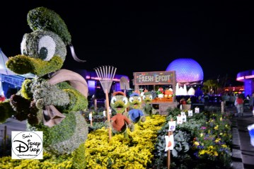The 2017 Epcot International Flower and Garden Festival - It's almost like a second festival with the night lighting.