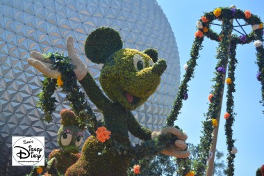 The 2017 Epcot International Flower and Garden Festival - The Entrance Topiary, Welcome to Spring Fun, Food and Flowers Mickey