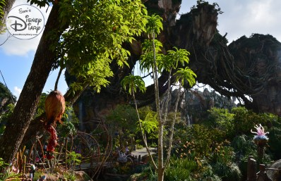 """A few of the valley from the Queue of """"Flight of Passage"""""""