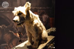"The Hero of Pirates of the Caribbean, the Dog. Complete with behind the scenes ""plumbing"" part of the D23 Expo Pirates Archive"