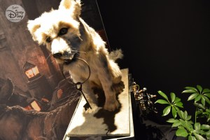 """The Hero of Pirates of the Caribbean, the Dog. Complete with behind the scenes """"plumbing"""" part of the D23 Expo Pirates Archive"""