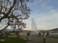 Montreux 021