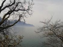 Montreux 115