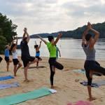 samskara yoga healing community vinyasa sterling va