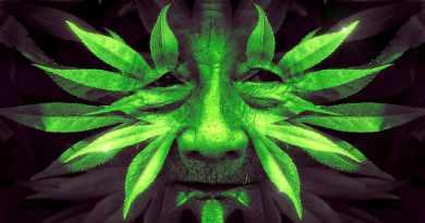 What is a shaman storyteller.