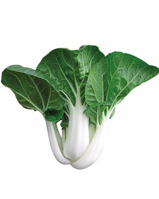網上圖片:送給爸爸的白菜