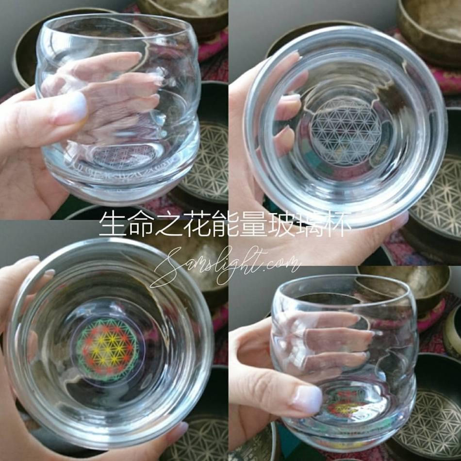 FoL-Glass
