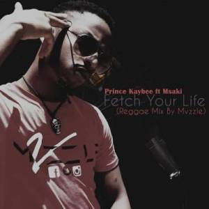 Prince Kaybee – Fetch Your Life (Reggae Mix By Mvzzle) Ft. Msaki-samsonghiphop