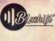 DJ Thakzin – Bona (BluShift Bootleg) Ft. Gwen (Audio)