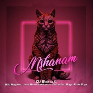 DJ Boonu – Mshanam Ft. Distruction Boyz, Madanon, Rude Boyz, Stilo Magolide & Jaiva Zimnike