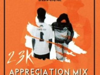 Buddynice – 23K Appreciation Mix (Redemial Sounds) (Mixtape)