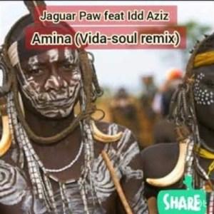 Jaguar Paw – Amina (Vida Soul Remix) Ft. Idd Aziz [Audio]