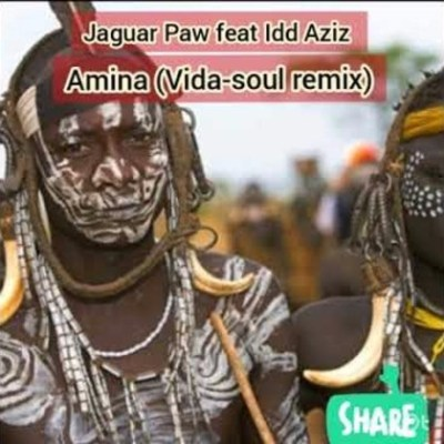 Jaguar Paw – Amina (Vida Soul Remix) Ft. Idd Aziz [Audio]