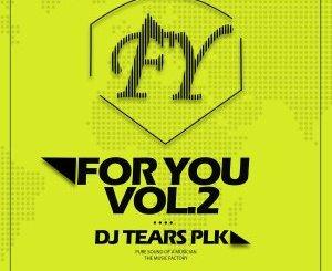 DJ Tears PLK – For You Vol 2 [Album]