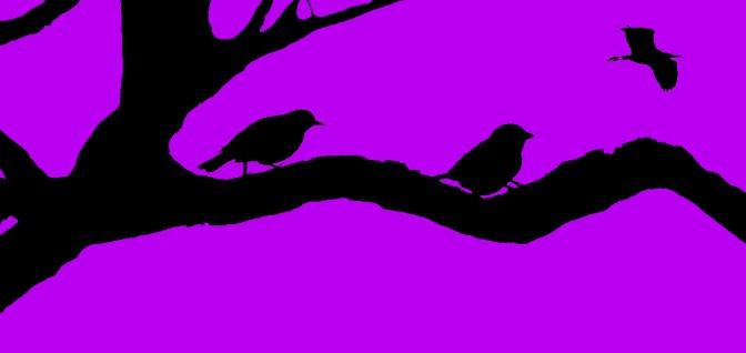 bird trace 2 combo