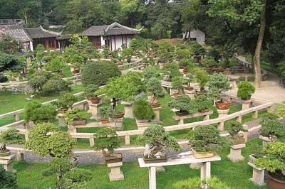 garden_design_feng_shui