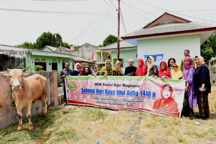 Ketua BKOW Kepri Bagikan 3 Ekor Sapi dan 2 Kambing Kurban, SamuderaKepri
