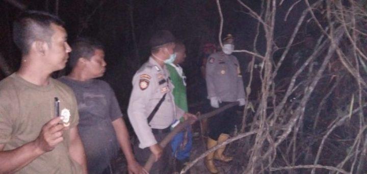 Kebakaran Hutan Di Desa Sungai Harapan Kembali Terjadi