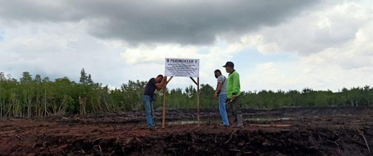 Gawat !! Hutan Mangrove Habis Di Babat Pengusaha Tambak Ketam, Diduga Mlilik WNA, Gawat !! Hutan Mangrove Habis Di Babat Pengusaha Tambak Ketam, Diduga Mlilik WNA, SamuderaKepri