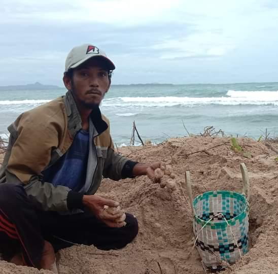 Pantai Desa Teluk Nibung Pulau Banyak Surga Bagi Penyu Untuk Bertelur, SamuderaKepri