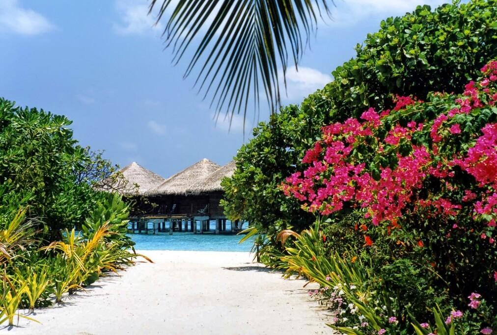 Baros Island Resort, Maldives