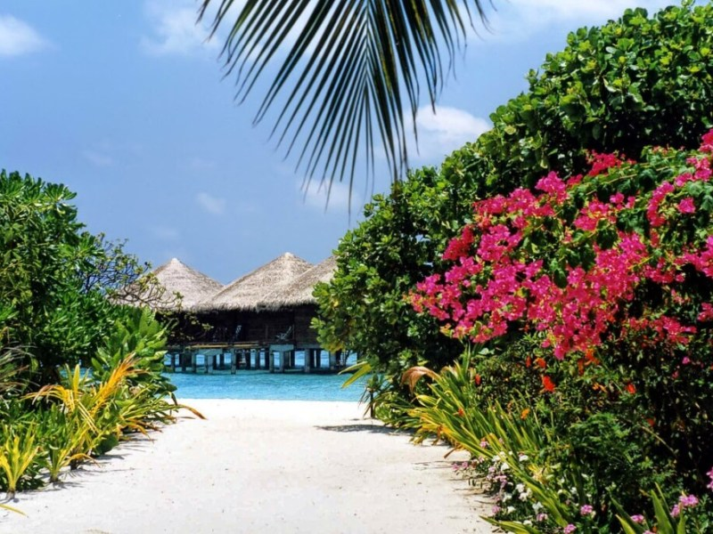 Baros Island Resort Maldives Header