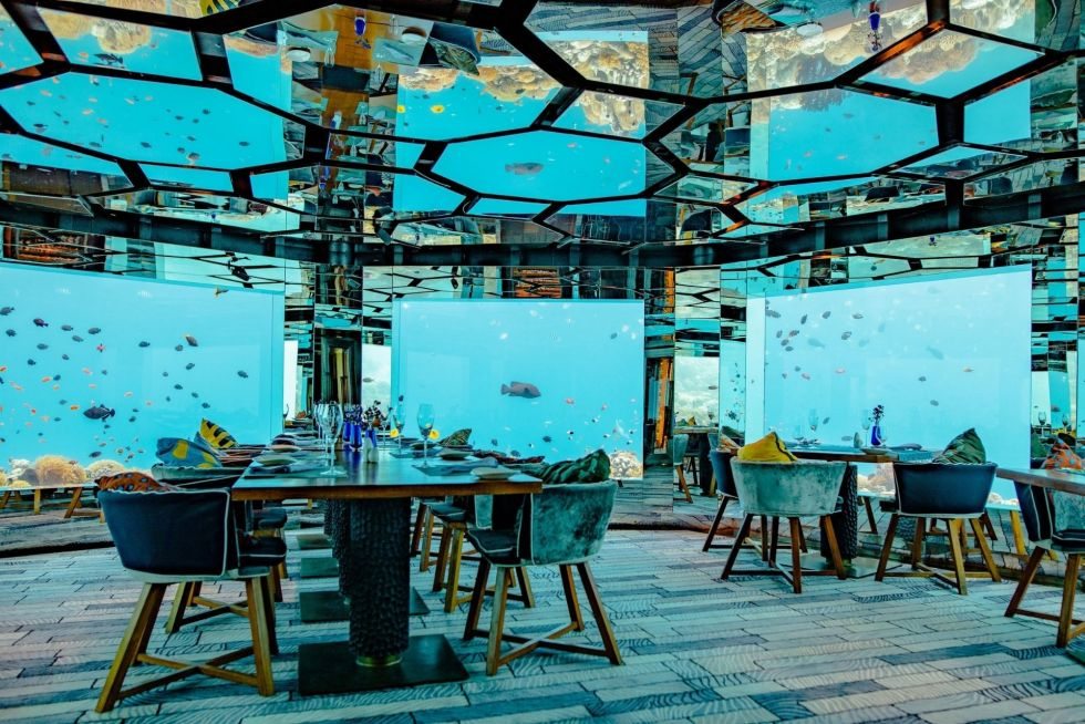 Underwater Dining Experience in Maldives