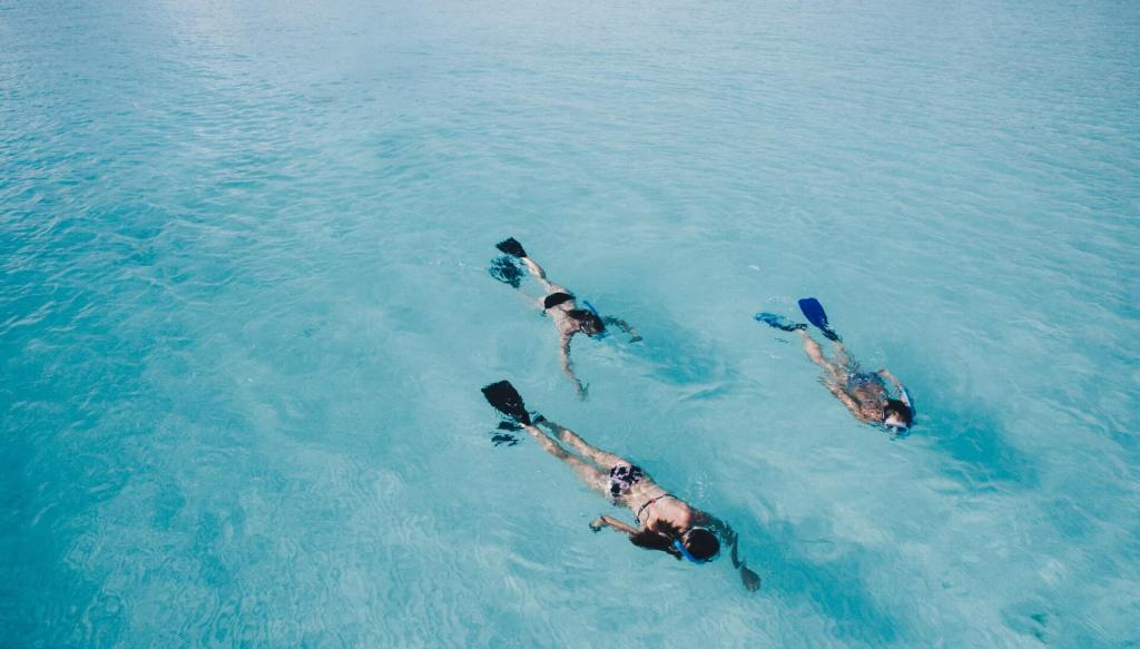 Snorkelling in Maldives