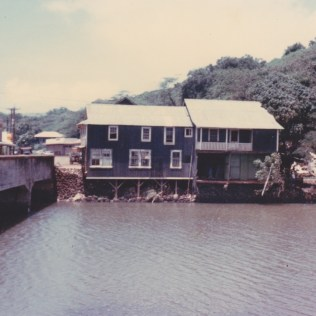 After the Flood 1963