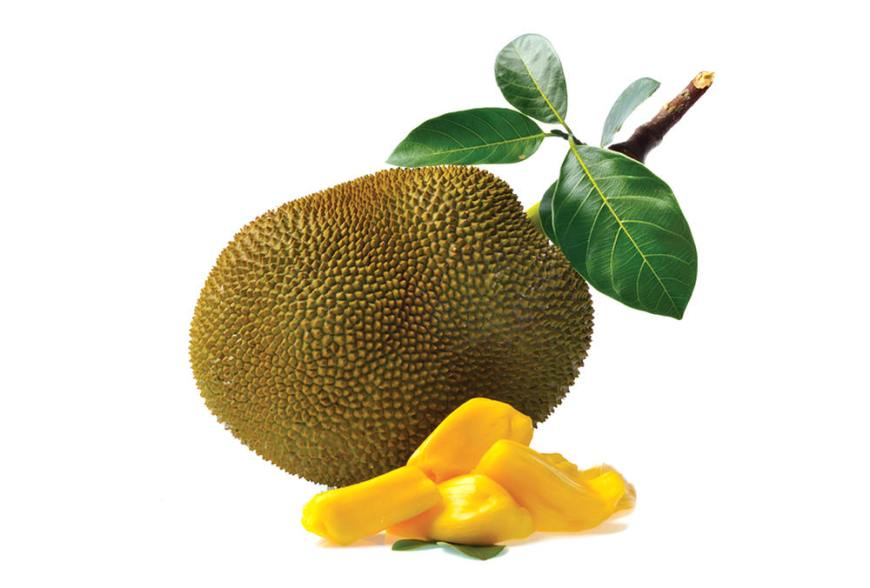 Top 15 fruits - Jackfruit Khanoon