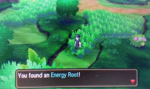 Where to find the Energy Root on Route 4