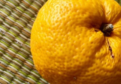 【24の季節とネクタイ】12/21~1/4頃は二十四節気のひとつ『冬至(とうじ)』古代では1年の始まり。一陽来復。冬至を境に日に日に昼の時間が長くなります。禊の意味で柚子湯。