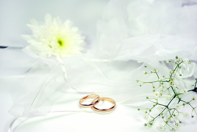 偽装 結婚 の ススメ ネタバレ