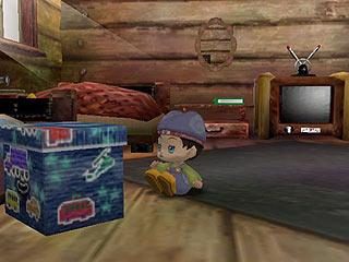 Samurai Nintendo Harvest Moon Another Wonderful Life GameCube