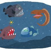 [Tentacle] deep-sea organisms