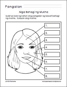 Mga Bahagi Ng Mukha Parts Of The Face Worksheet