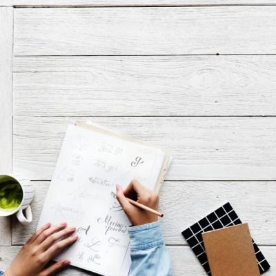 setup online business sam vander wielen diy legal templates health coach business coach online entrepreneur