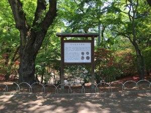 沼田城の本丸跡