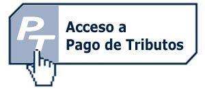 Acceso a pago tributos Ayuntamiento de San Andrés y Sauces