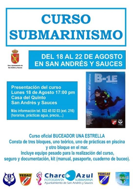Cartel Curso de Submarinismo