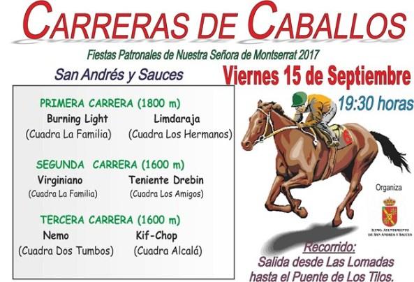 CARTEL CARRERA CABALLOS