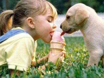 perro, niños, mascota
