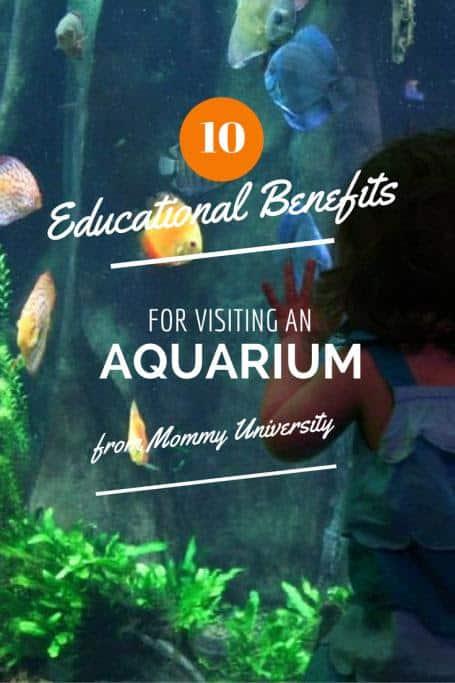 San Antonio Aquarium Coupons