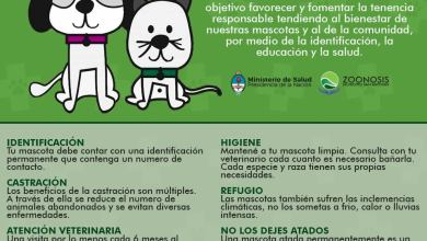 Photo of TENENCIA RESPONSABLE DE MASCOTAS