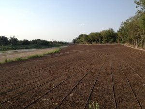 Drip irrigation system off of Mission Reach