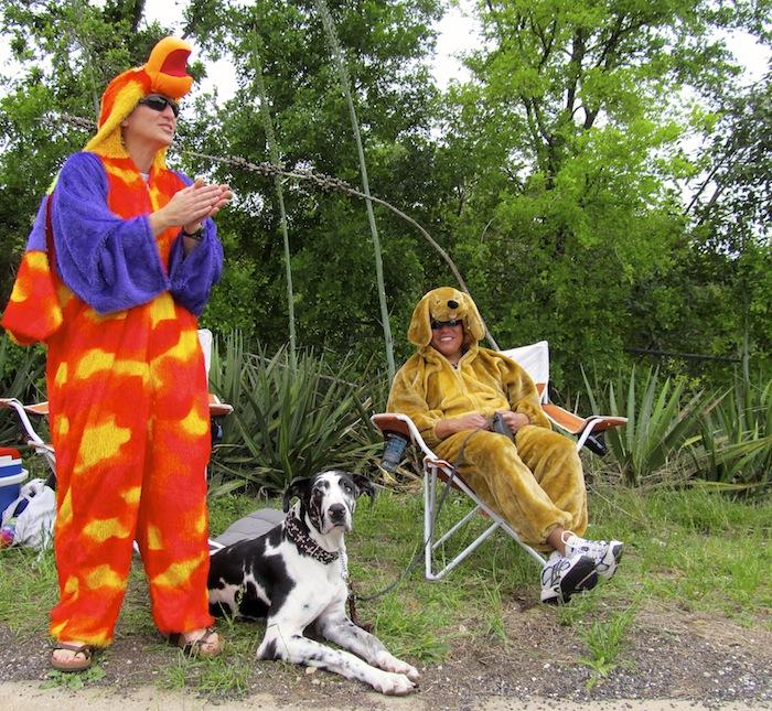 chickenanddogs