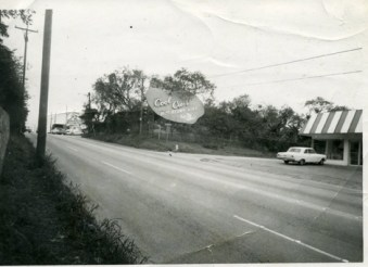The Cool Crest sign in 1974 across Fredericksburg Road. Courtesy of the Metzger Estate.
