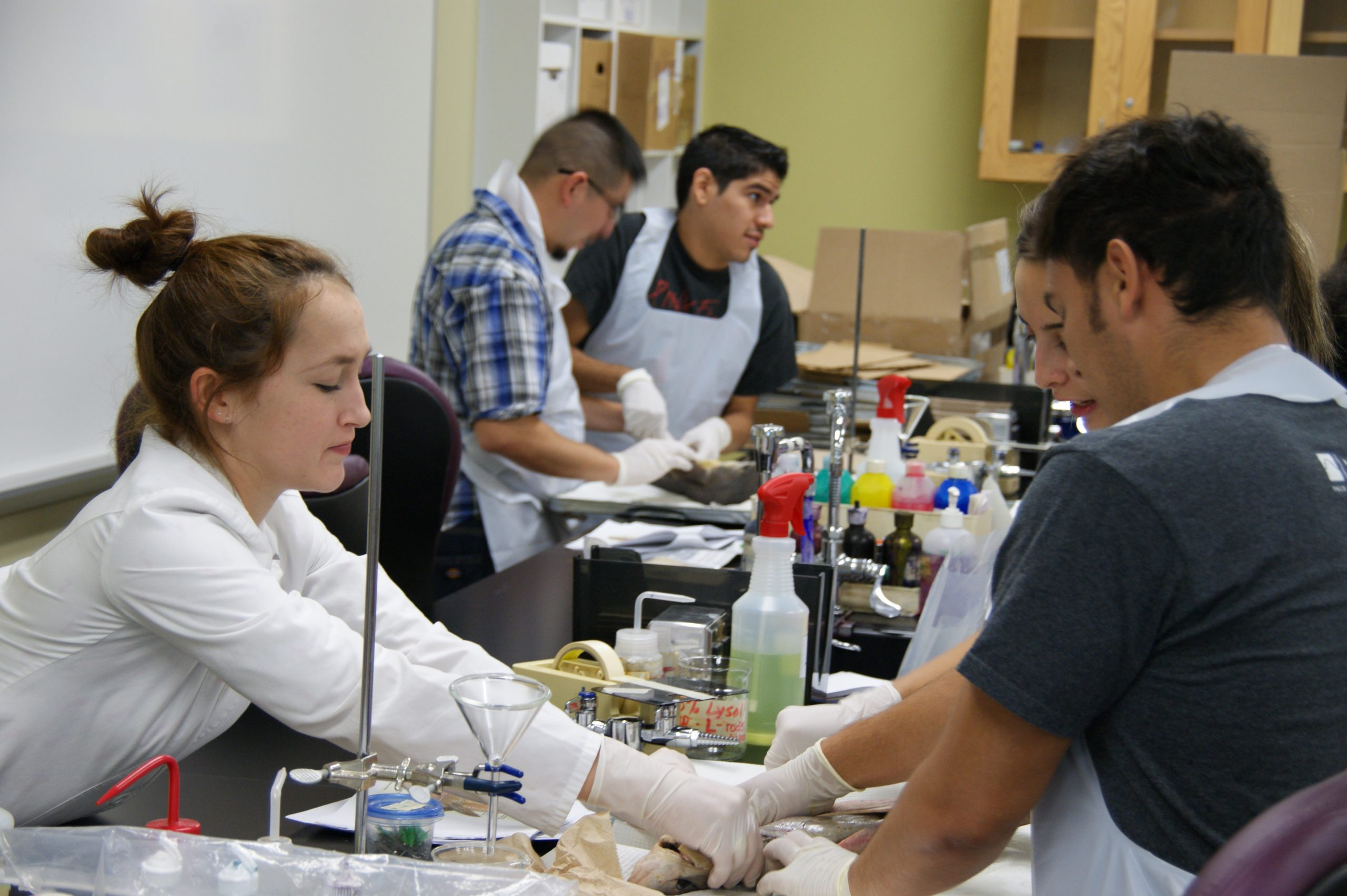 High school students experience a college curriculum through various pre-college programs at Palo Alto College.